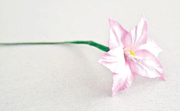 Красивые цветы из бумаги. Мастер-класс (19)
