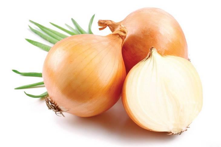 Полезные свойства лука, чем полезен лук (1)