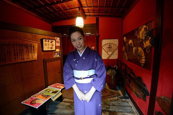 В гостях у гейши (6)
