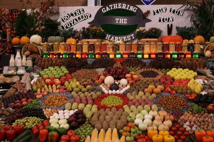 Красивые раскладки овощей и фруктов в магазинах (4)