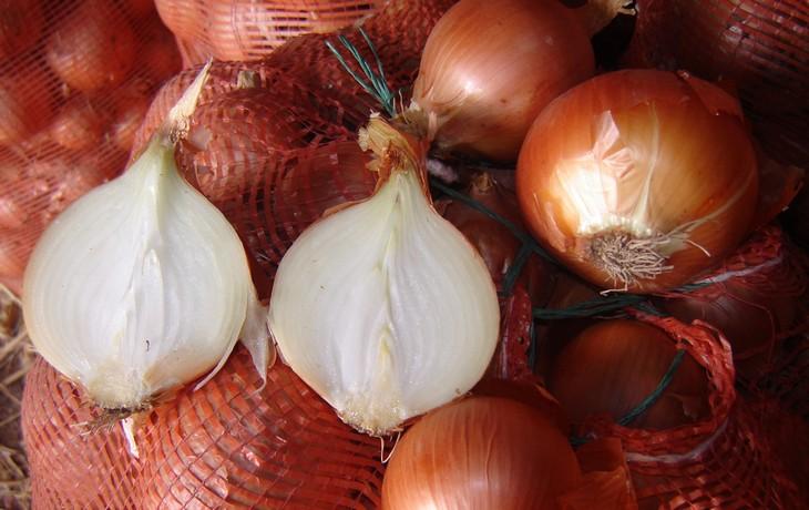 Полезные свойства лука, чем полезен лук (5)