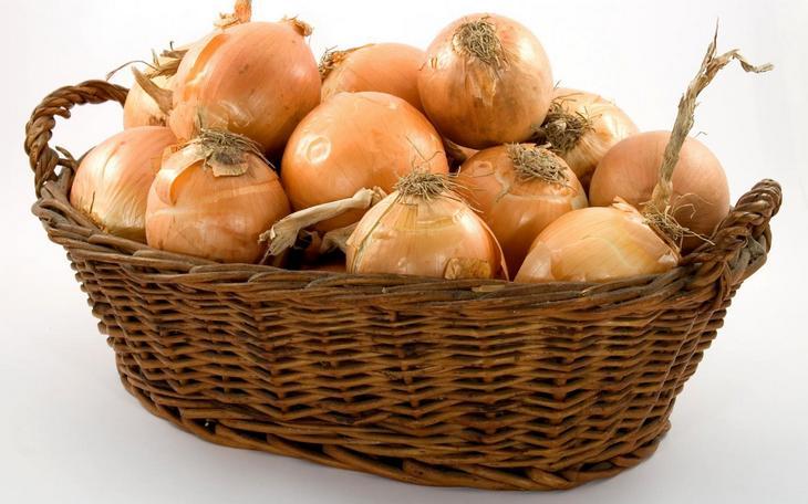 Полезные свойства лука, чем полезен лук (4)