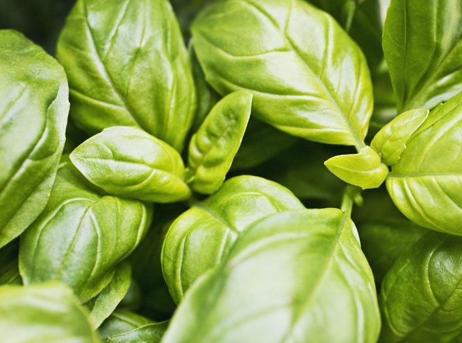 10 продуктов, которые нельзя хранить в холодильнике (4)