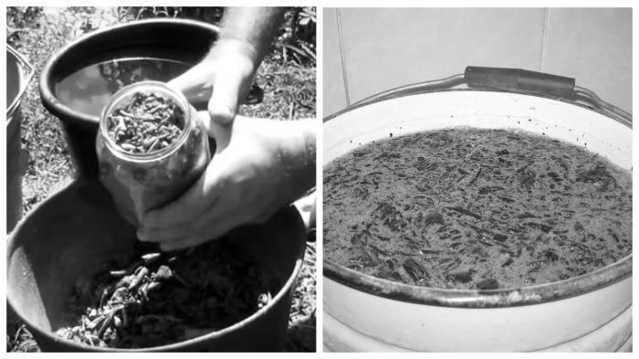 Как в прошлые времена хозяйки стирали белье (4)